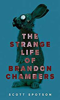 Cover for book, The Strange Life of Brandon Chambers. Read and review books like this one for free .
